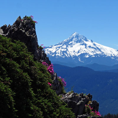 Cover image for the ESA 2017 annual report. (A mountain scene.)