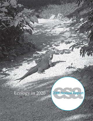 2006 Annual Report Cover.