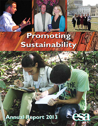 2013 Annual Report Cover.