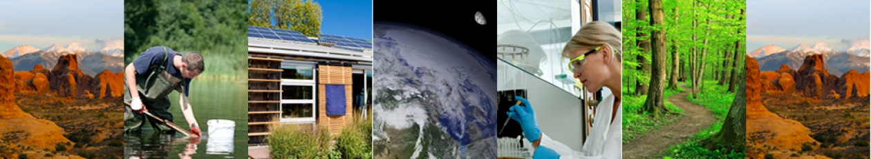 Collague of images which describe the ecological economics.